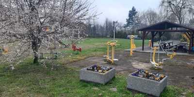 Galeria Karchów -Ligota